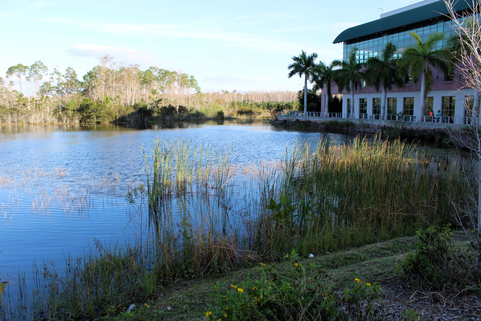 Leadership, diversity and unity at FGCU
