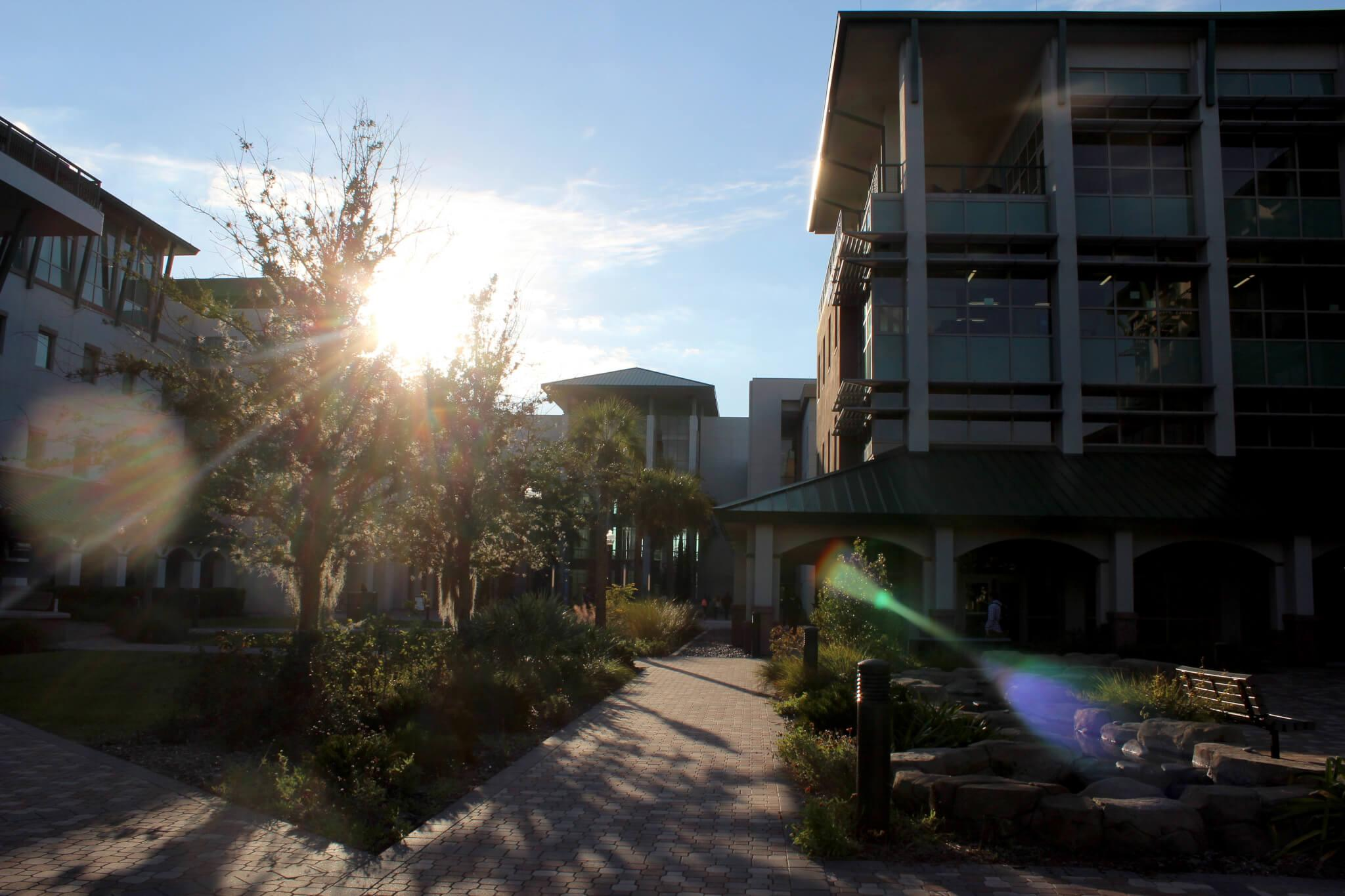 FGCU News: A Year in Review