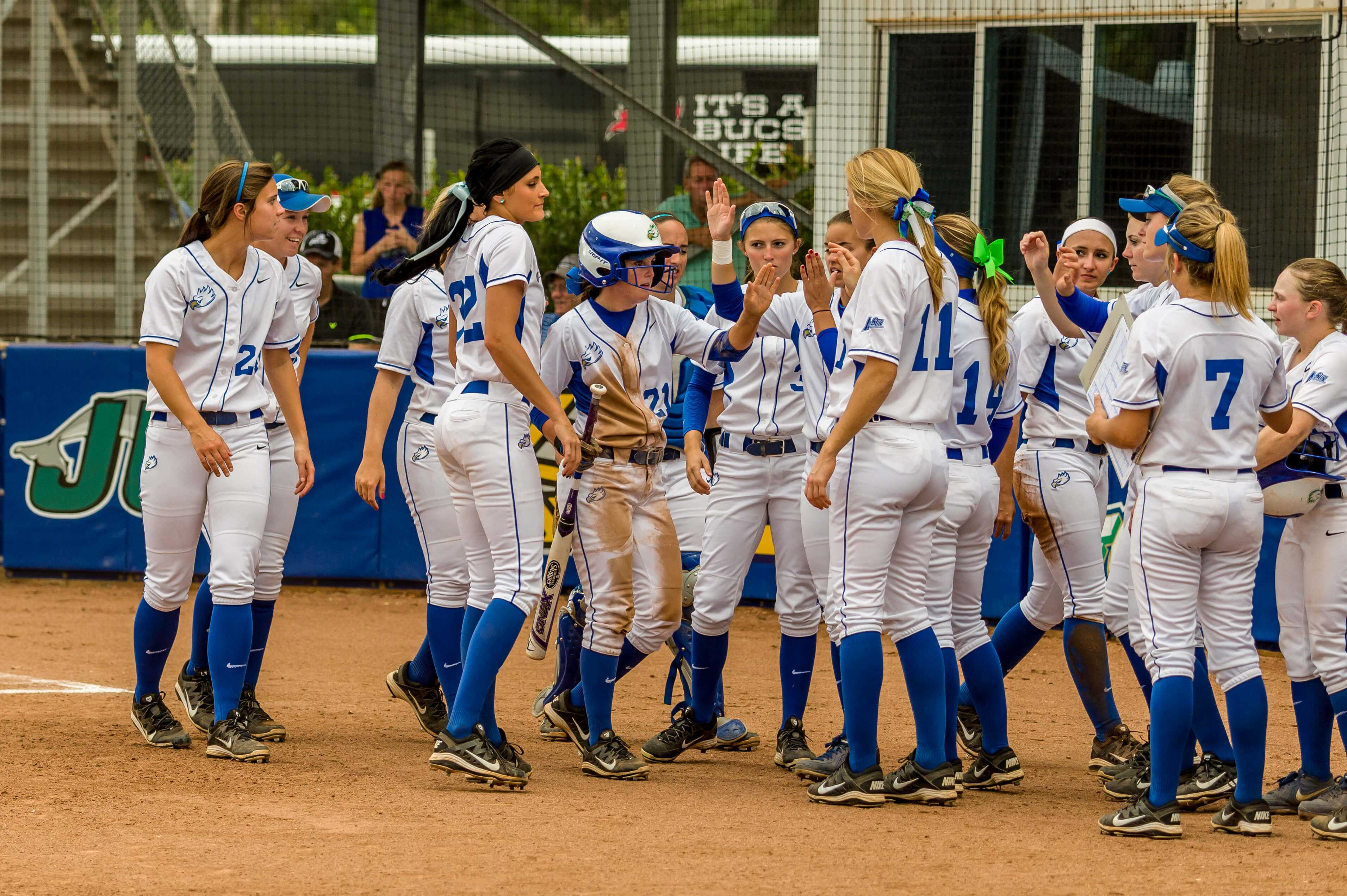 FGCU softball announces 2016 schedule