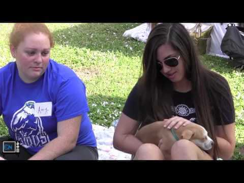 PuppyPalooza brings stress-relief to students