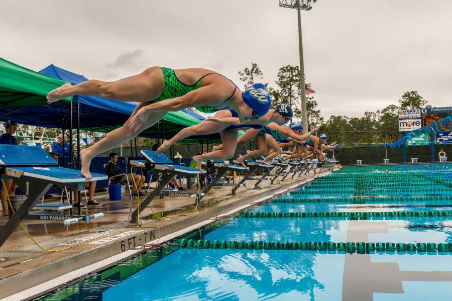 Swimmers start from the block in recent meet hosted by FGCU against Rice University. (Photo by Linwood Ferguson)
