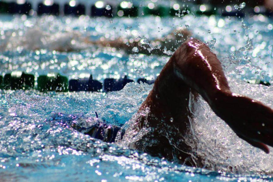 FGCU swimming and diving earns CSCAA Scholar All-America Team Award for 10th time
