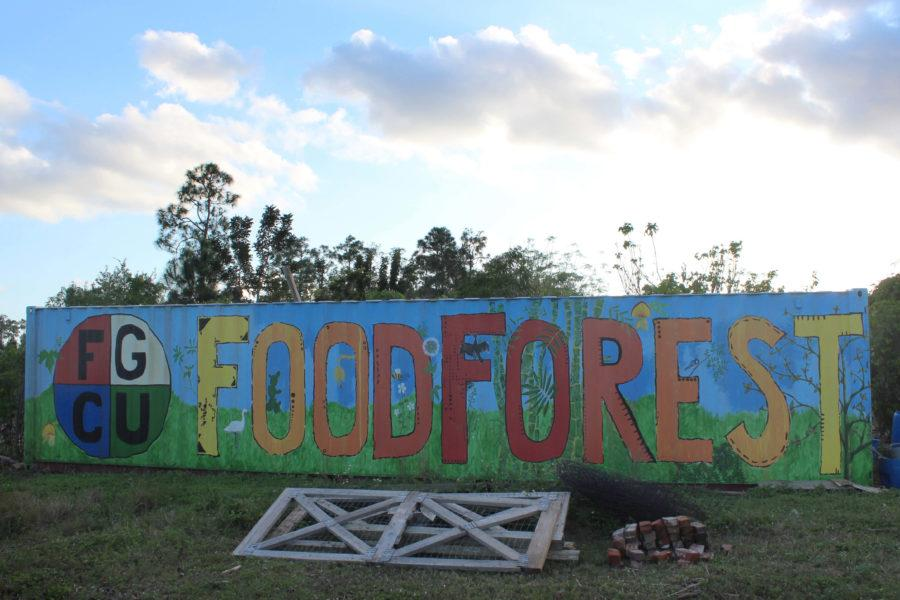 The+student-run+Food+Forest+at+FGCU+is+free+and+open+to+all+students+of+the+university.+