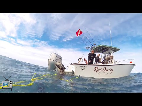 Spearfishing club shoots for more