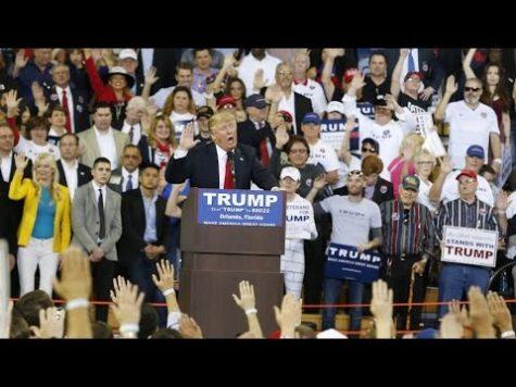 Trump rally pledge mirrors Nazi salute