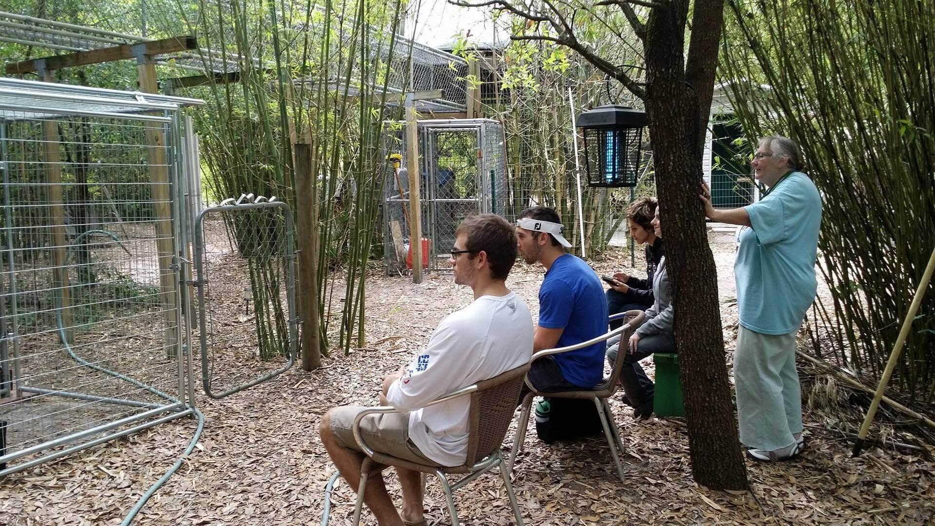 FGCU alumnus conducts research at primate sanctuary