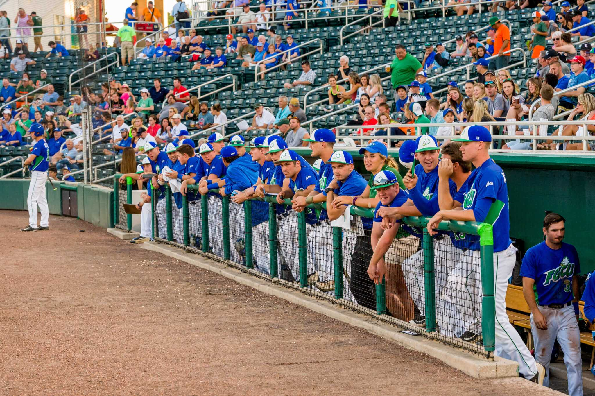 Former FGCU baseball players find success at the next level