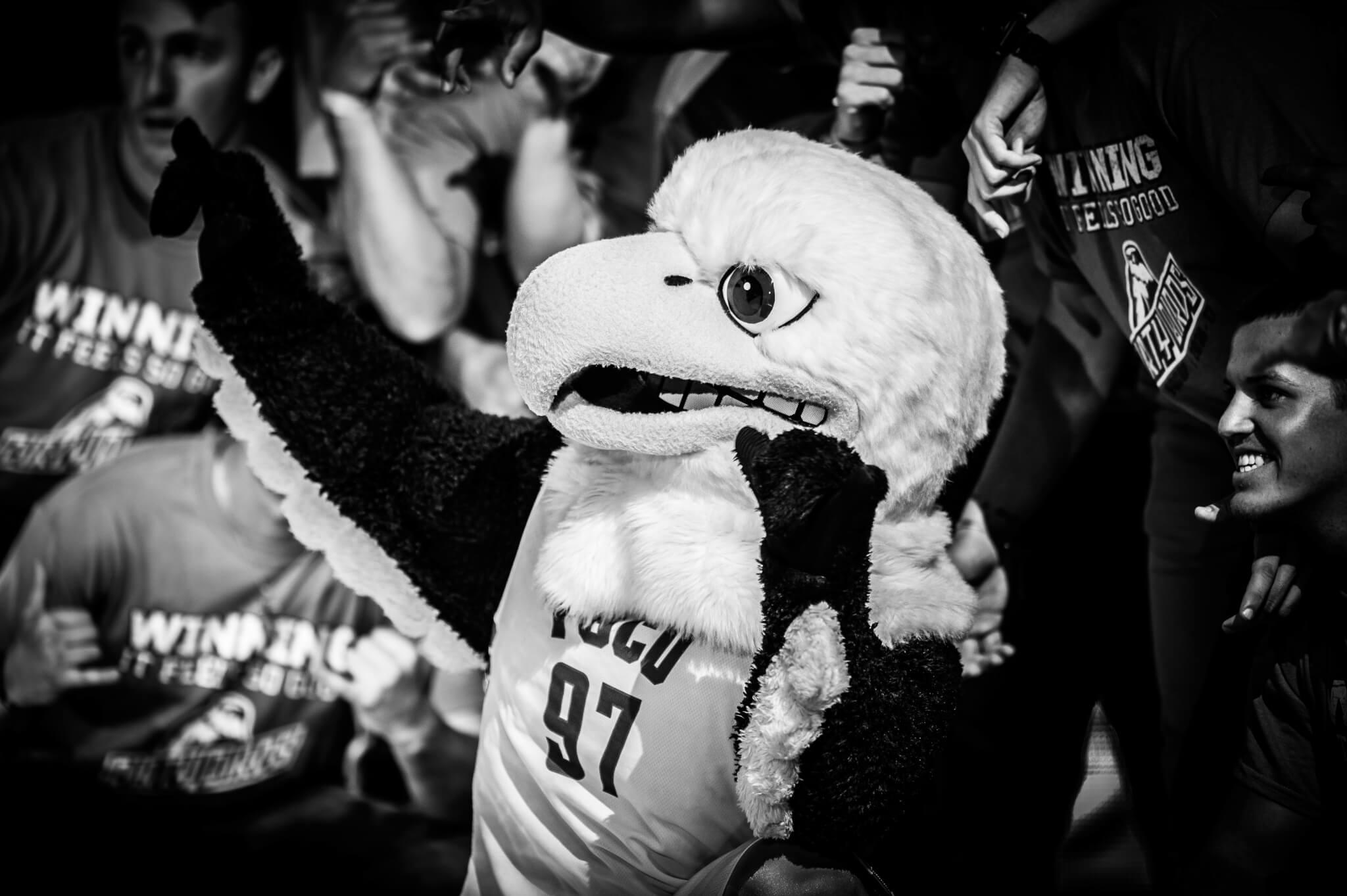 Eagle Revolution 2016