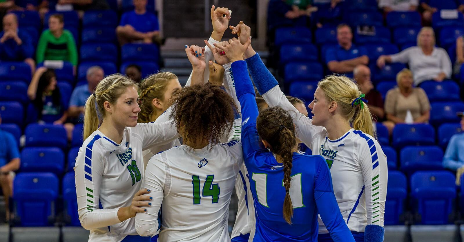 FGCU volleyball chases Big 10 teams
