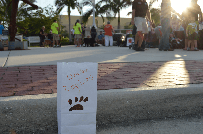 Animal rescue network honors the homeless
