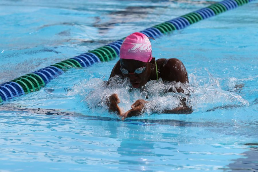 Swimming+and+diving+at+UCLA