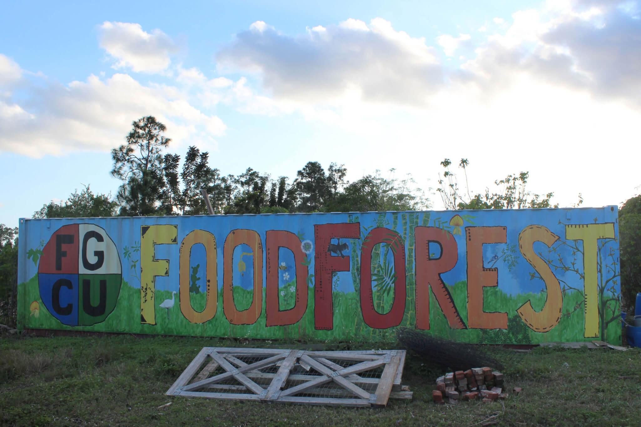 Real Food Challenge hopes to partner with Food Forest