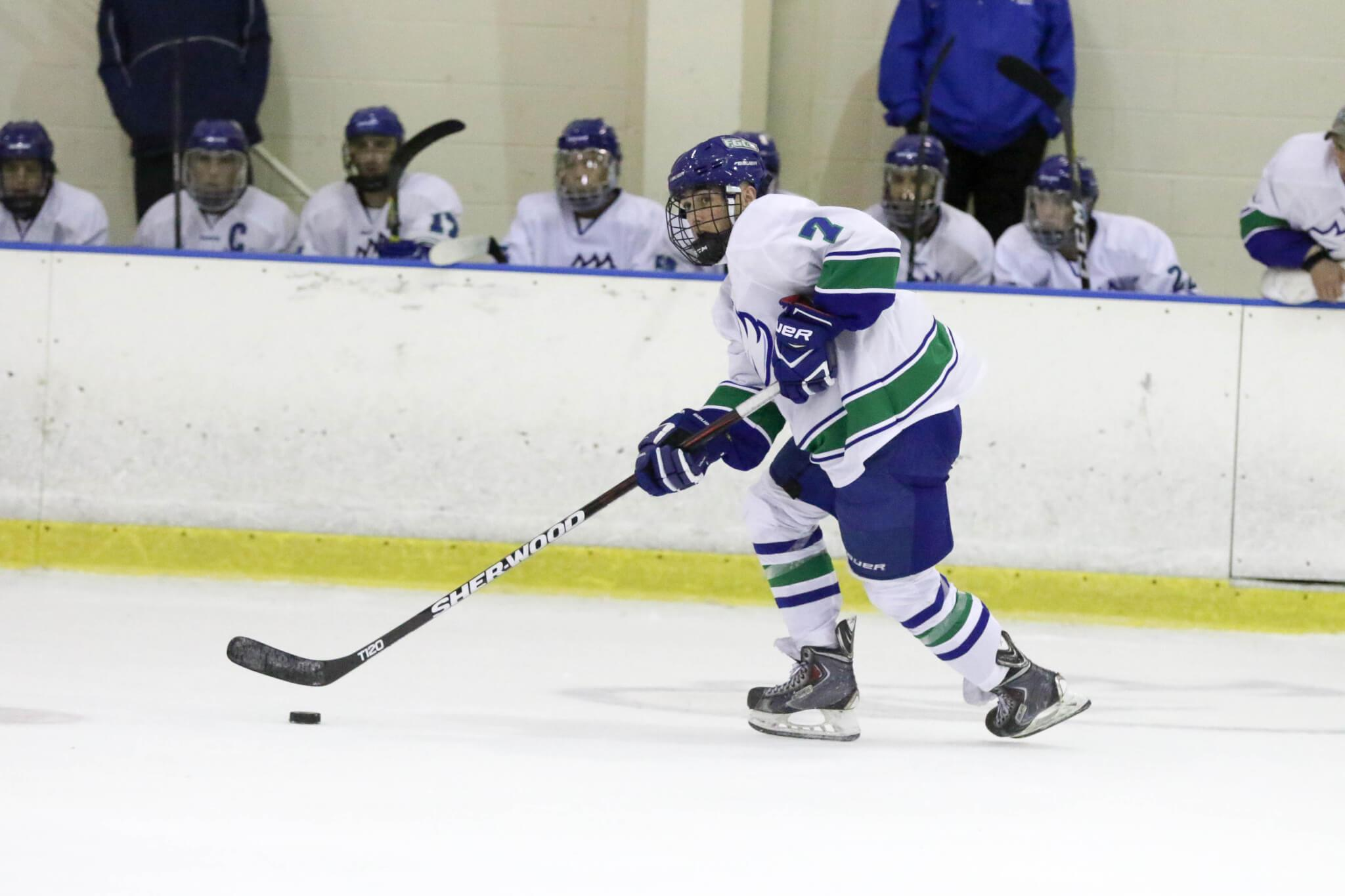 DII Hockey extends undefeated season with 10th and 11th consecutive victories