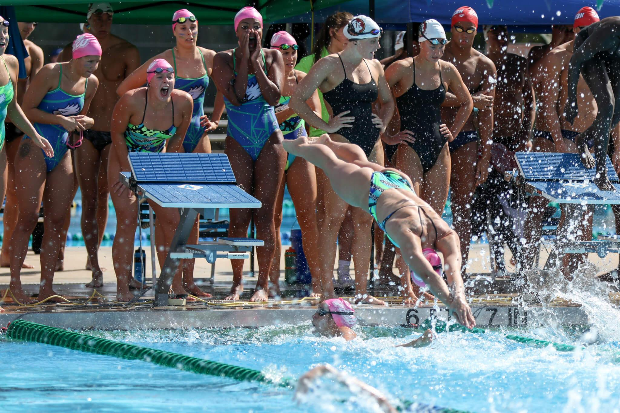 FGCU swimming and diving defeats two before falling to FSU at FGCU quad-meet