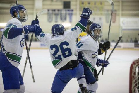 DII hockey