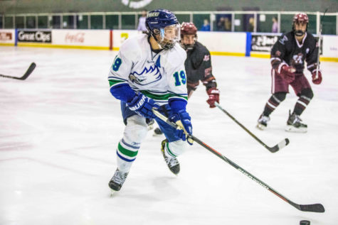 DII hockey heads to nationals