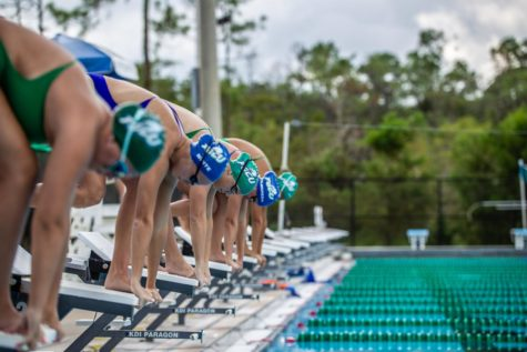 FGCU swimming is changing for the better
