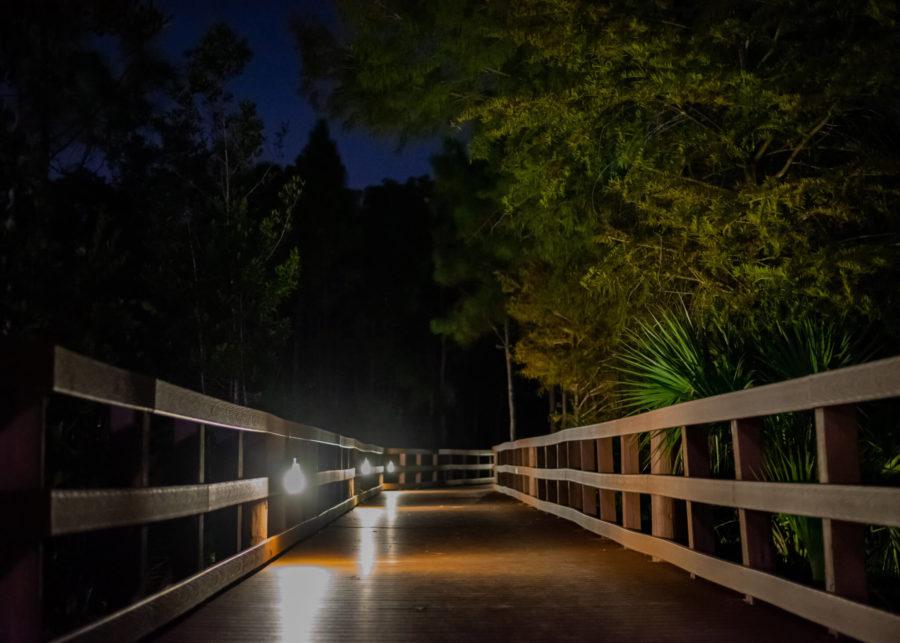 The+boardwalk+connecting+Parking+Garage+3+to+main+campus+should+be+fully+lit+at+night.+EN+Photo+by+Julia+Bonavita.+