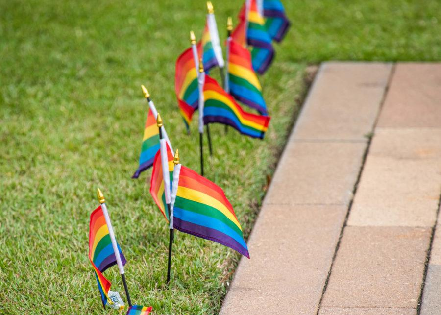 EN Photo by Julia Bonavita. Rainbow flags lined the library lawn at FGCU for the pride celebration.