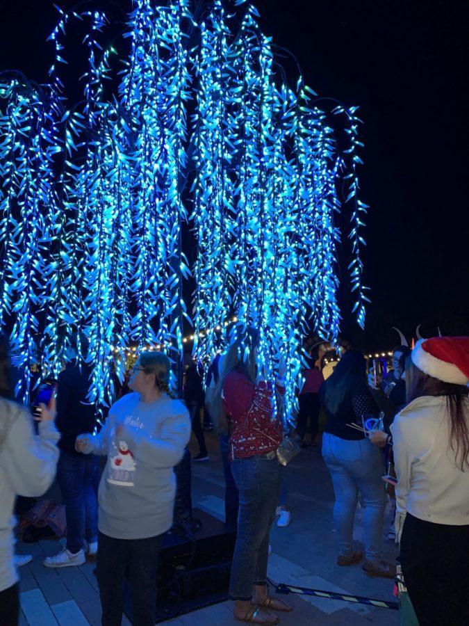 EN photo by Nina Mendes. FGCU's Winter Wonderland event.