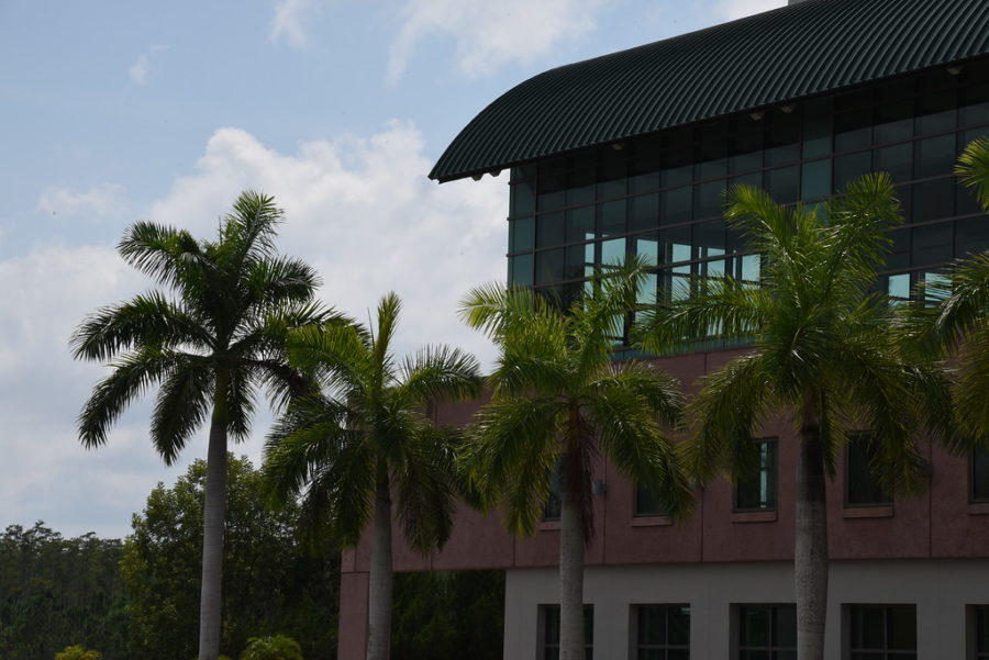FGCU+Announces+Summer+A+and+C+Courses+Online+Only