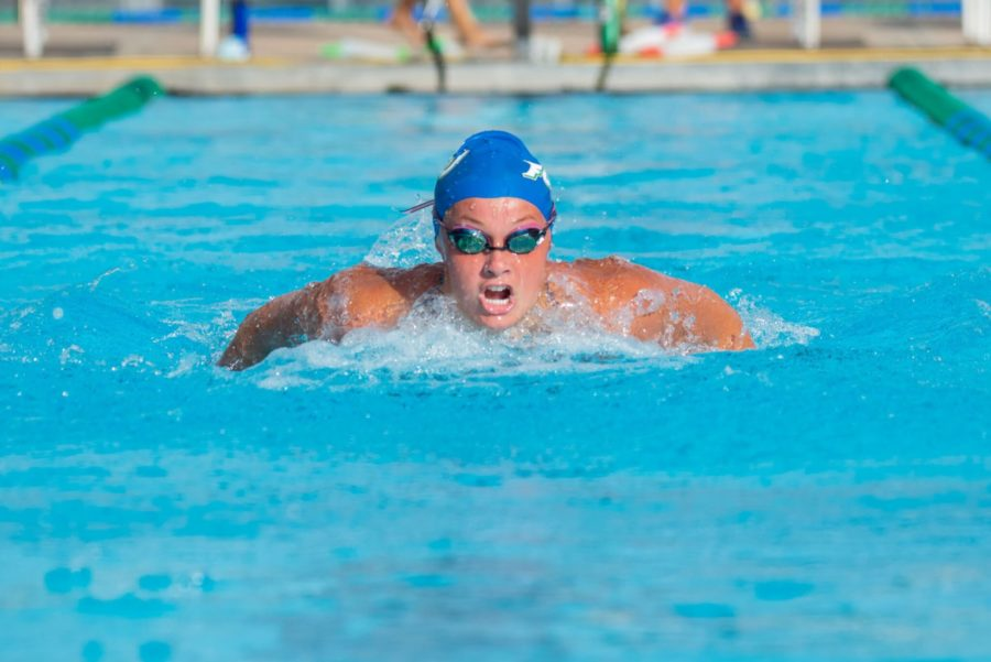FGCU Womens Swim and Dive Held Their Annual Green and Blue Competition; EN Photo by Julia Bonavita